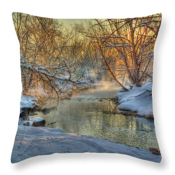 A February Face Throw Pillow by William Fields
