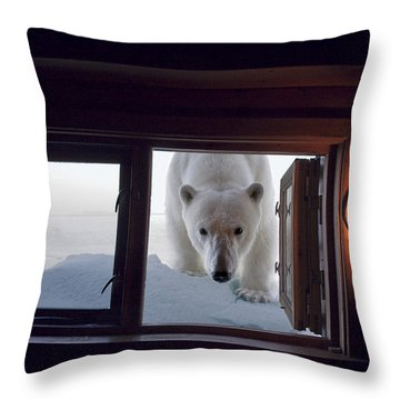 A Female Polar Bear Peering Throw Pillow by Paul Nicklen