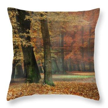 A Foggy Autumn Day Throw Pillow by Hannes Cmarits