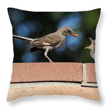A Mothers Work Is Never Done Throw Pillow by Lynn Bauer