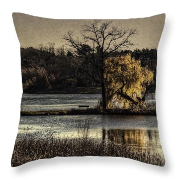 A Place To Think Throw Pillow by Thomas Young
