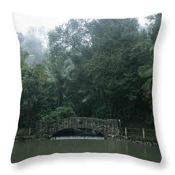 A Rainstorm In El Yunque, Puerto Rico Throw Pillow by Taylor S. Kennedy