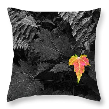 A Rare Thing Throw Pillow by William Fields