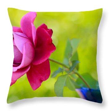 A Single Rose Throw Pillow by Heidi Smith