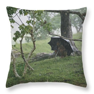 A Small Child Takes Refuge Throw Pillow by James P. Blair