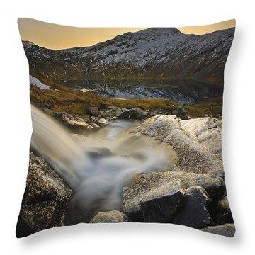 A Small Creek Running Throw Pillow by Arild Heitmann