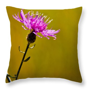 A Solitary Moment Throw Pillow by Nancy Harrison