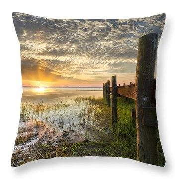 A Special Day Throw Pillow by Debra and Dave Vanderlaan