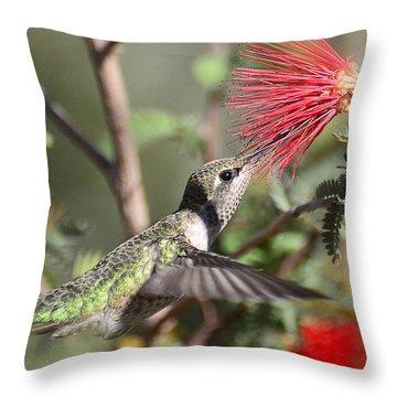 A Taste For Nectar  Throw Pillow by Saija  Lehtonen