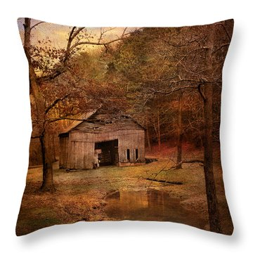 Abandoned Barn Throw Pillow by Jai Johnson