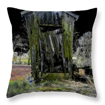 Abandoned Throw Pillow by Cindy Roesinger