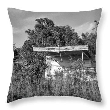 Abandoned Throw Pillow by Lynn Palmer