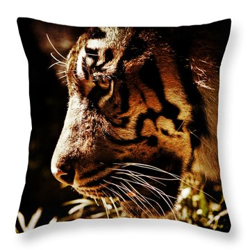 Absolute Focus Throw Pillow by Andrew Paranavitana