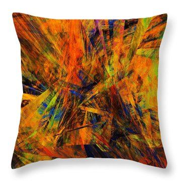 Abstract 100611 Throw Pillow by David Lane
