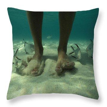 Adult Palometa Fish Dog The Steps Throw Pillow by David Doubilet