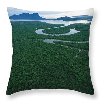 Aerial View Of The Salak River. Mount Throw Pillow by Tim Laman
