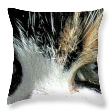 Aged Eyes Throw Pillow by Rory Sagner