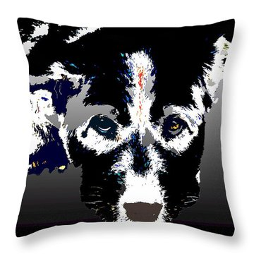 Akita Chow Throw Pillow by One Rude Dawg Orcutt
