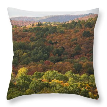 Algonquin In Autumn Throw Pillow by Cale Best