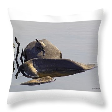 All By Myself Throw Pillow by Brian Wallace