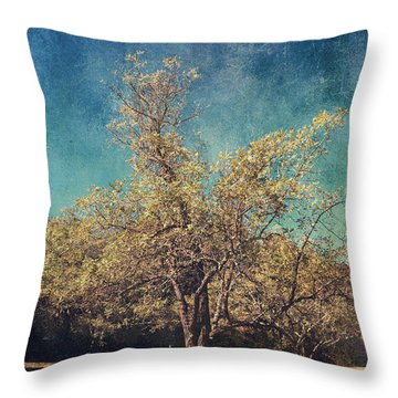 All That's Unknown Throw Pillow by Laurie Search