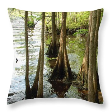 Along The Waccamaw - Cypress Swamp Throw Pillow by Suzanne Gaff