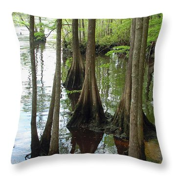 Along The Waccamaw Throw Pillow by Suzanne Gaff