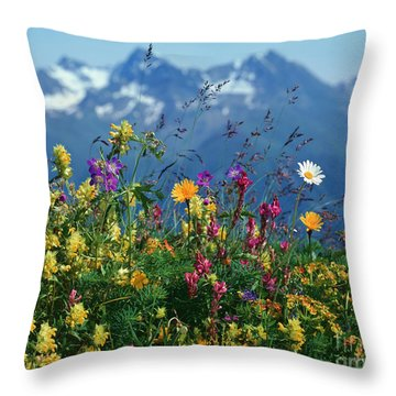 Alpine Wildflowers Throw Pillow by Hermann Eisenbeiss and Photo Researchers