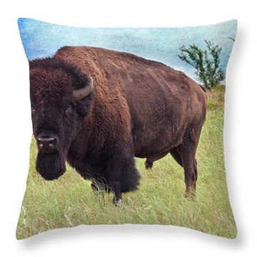 American Bison Throw Pillow by Tamyra Ayles
