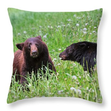 American Black Bear With Cub Throw Pillow by Louise Heusinkveld