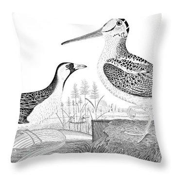 American Ornithology Throw Pillow by Granger