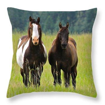 American Paint Stallion And Mare Throw Pillow by Karon Melillo DeVega
