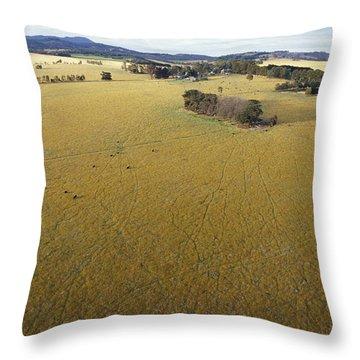 An Aerial View Of Farmland Throw Pillow by Jason Edwards