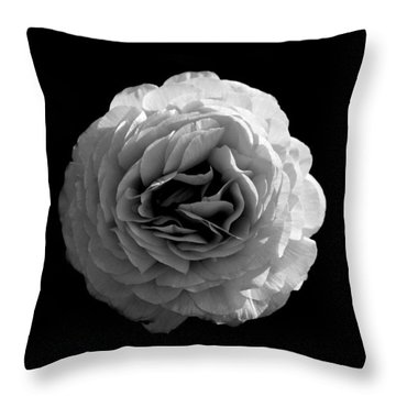 An English Rose Throw Pillow by Sumit Mehndiratta
