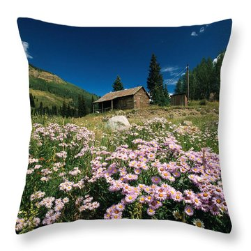 An Old Miners Cabin With Purple Asters Throw Pillow by Richard Nowitz