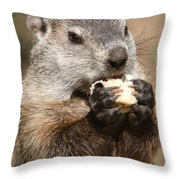 Animal - Woodchuck - Eating Throw Pillow by Paul Ward