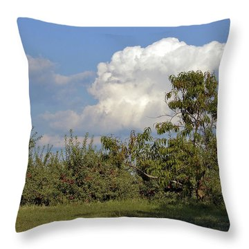 Apple Orchard Throw Pillow by Richard Gregurich