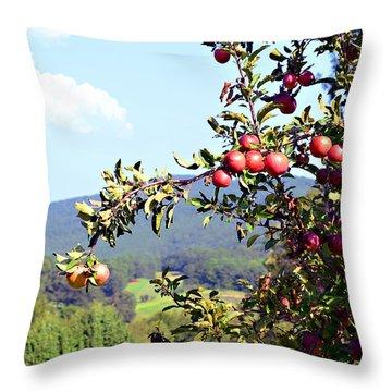 Apples On A Tree Throw Pillow by Susan Leggett