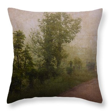 Arriving Home Throw Pillow by Ron Jones