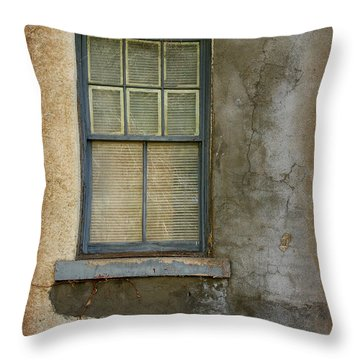 Art Of Decay Throw Pillow by Vicki Pelham