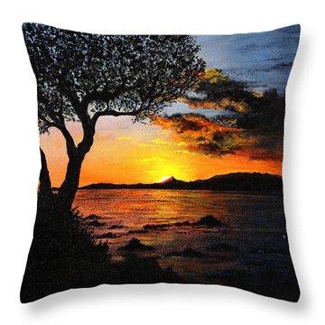 Aruba Sunset Throw Pillow by Stuart B Yaeger