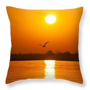 As The Seagull Heads Home Throw Pillow by Karol Livote