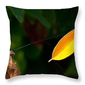 Atres 8 Throw Pillow by Karol Livote