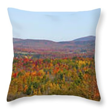 Autumn Panorama Brome Quebec Canada Throw Pillow by David Chapman