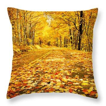 Autumn Road Throw Pillow by Darren Fisher