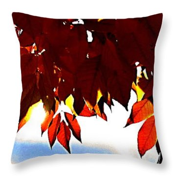 Autumn Sun Glory Throw Pillow by Danielle  Parent