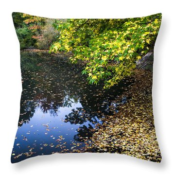 Autumn Tree Colors In Central Park In New York City Throw Pillow by Ellie Teramoto