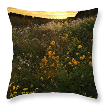 Autumn Wildflower Sunset - D007757 Throw Pillow by Daniel Dempster