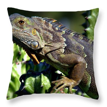 Balance Of Scales Throw Pillow by Karen Wiles