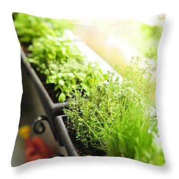 Balcony Herb Garden Throw Pillow by Elena Elisseeva